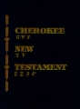 Cherokee/English New Testament parallel
